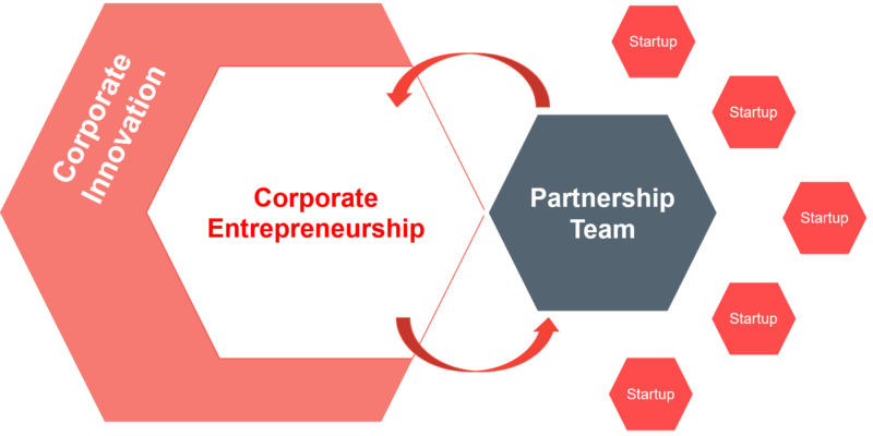 Corporate entrepreneurship is a subfield of corporte innovation. Together with partnership teams, corporates can engage with startups to innovate.